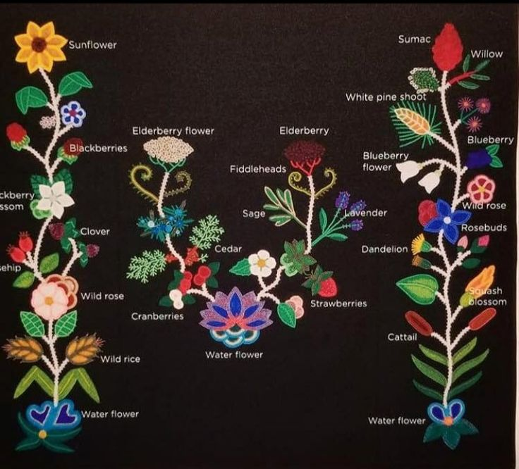 Ojibwe beadwork of important native plants by Jessica GokeyVideo interview with ...