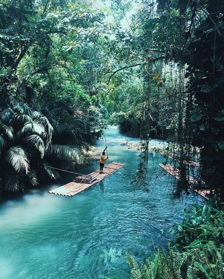 Take us on an adventure. - #Adventure #to #A #import #to # you