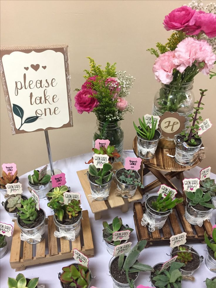 How adorable are these little succulents as party favors? These would be great f...