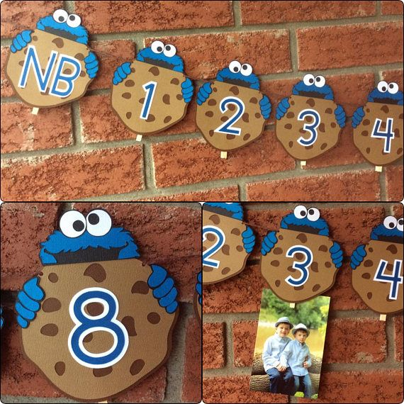 Cookie Monster 1st year photo banner - Cookie Monster Photo banner - NB -12 phot...