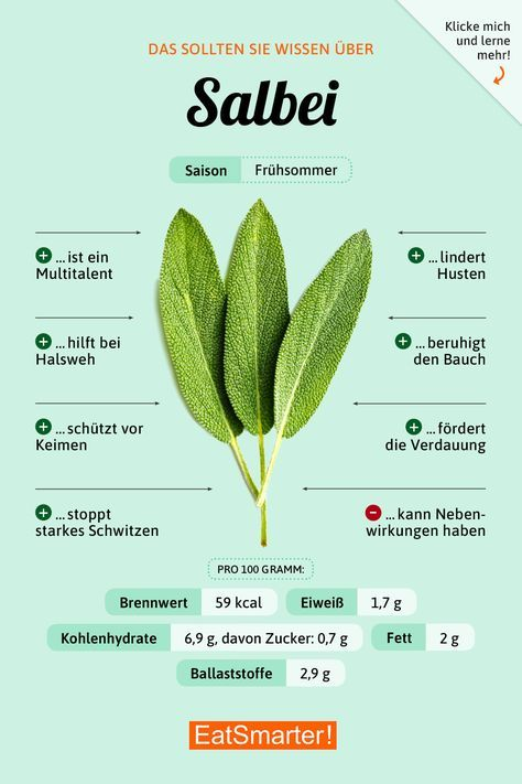 That's what you should know about sage | eatsmarter.de # nutrition #infographic #sal ...