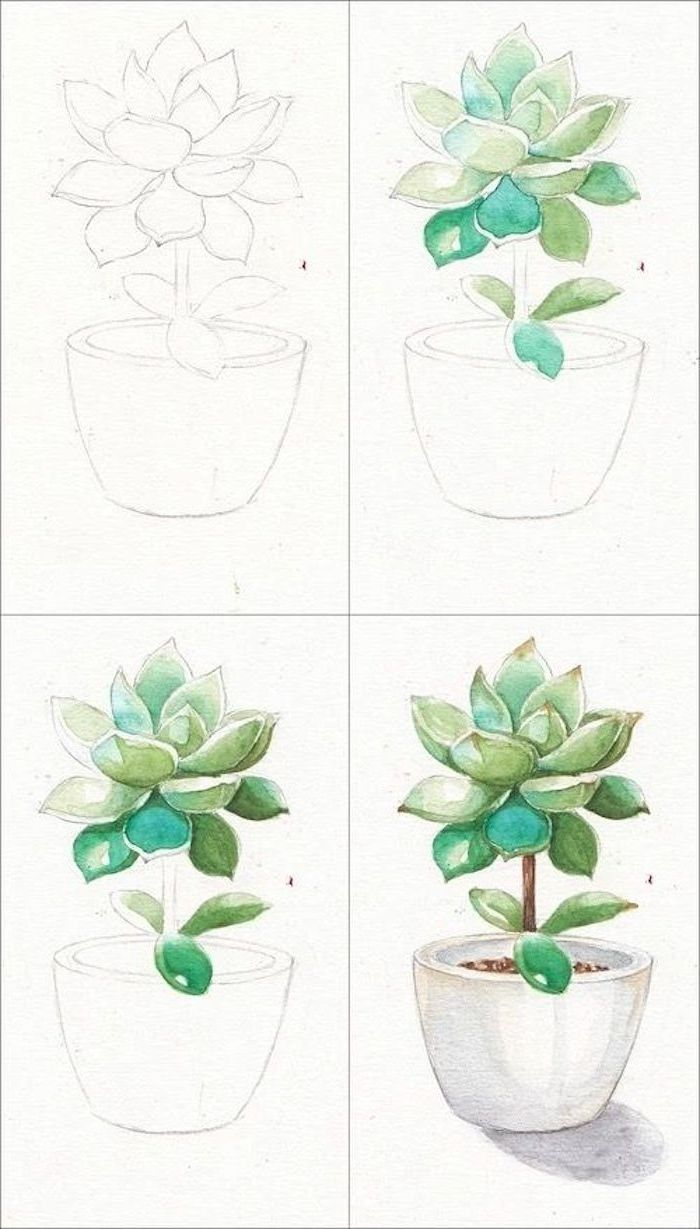 Learn to draw plant in flower pot, guide in four steps, draw ler ...