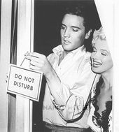 "Elvis Presley & Marilyn Monroe: ""Hach is that funny ... they all believe ..."